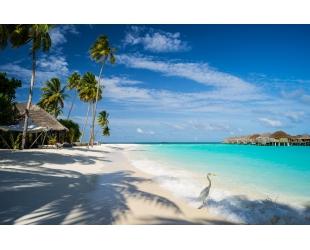 Лучший пляжный отдых на Мальдивах